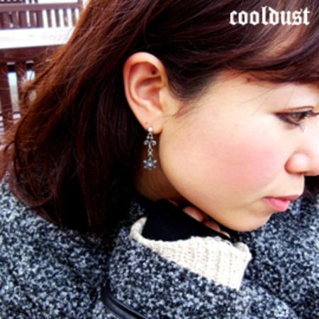 [cool dust] snow shadow long pierce